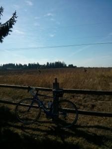my-bike-resting