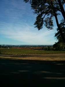 oregon-winery