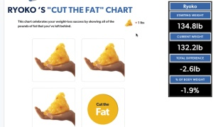 失った脂肪
