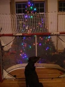 ホッケーゴールと共存するクリスマスツリー
