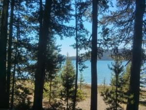 East Lakeキラキラ