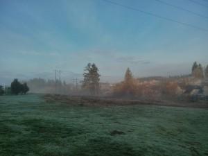 霧がたなびいていて風流じゃ(笑)